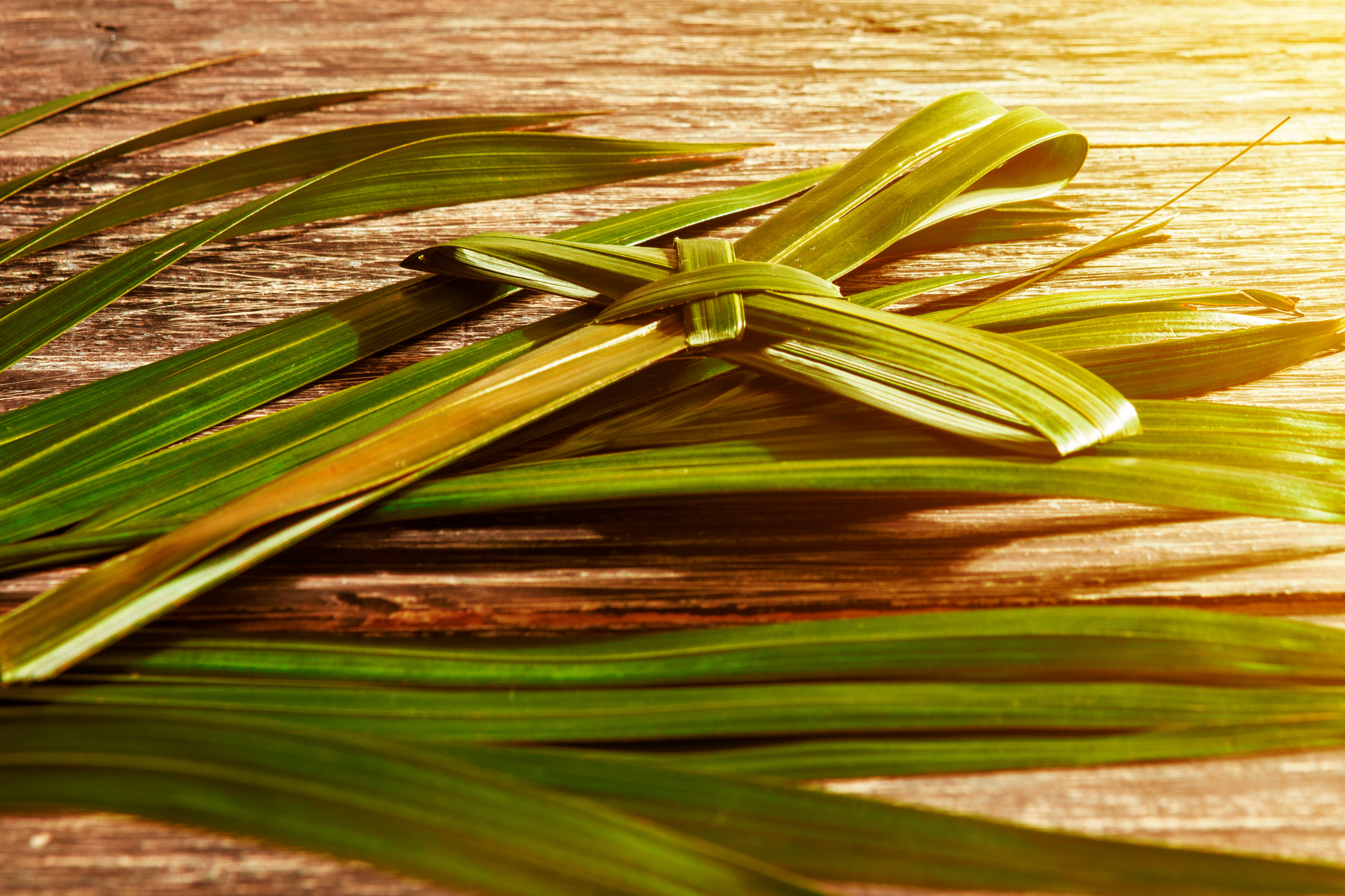 Palm Sunday: Catholic Customs & Traditions